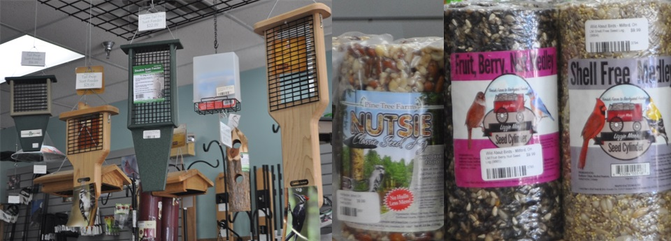 Suet feeders and logs